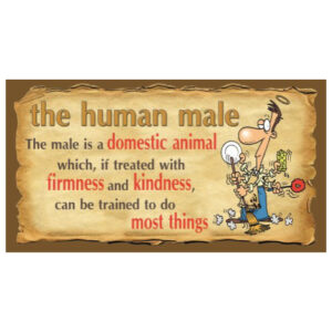 Human Male - SY28